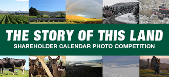 2019 Calendar Competition